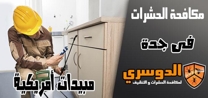 شركة مكافحة الحشرات في جدة