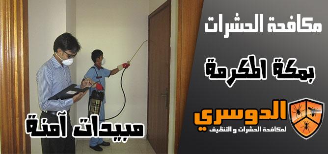 مكافحة الحشرات بمبيدات امنة في مكة المكرمة
