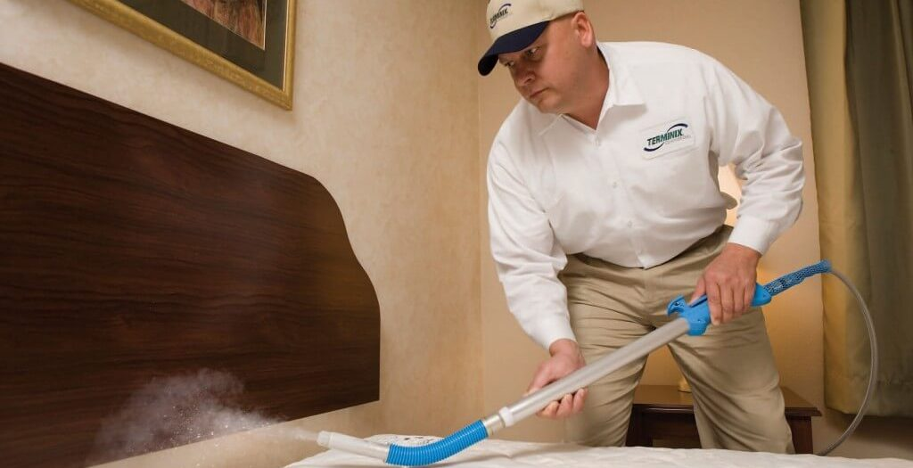 Bed Bug Exterminator: Learn How to Get Rid of Those Irritating Pests
