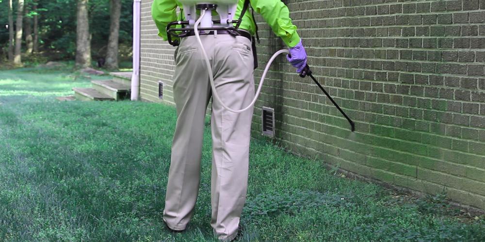 شركة رش مبيدات برابغ