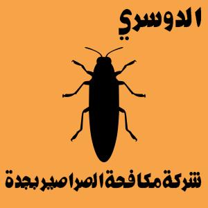 القضاء على الصراصير نهائيا من المنزل