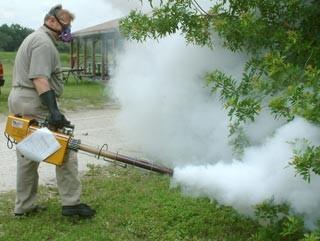 شركة رش مبيدات بعسفان