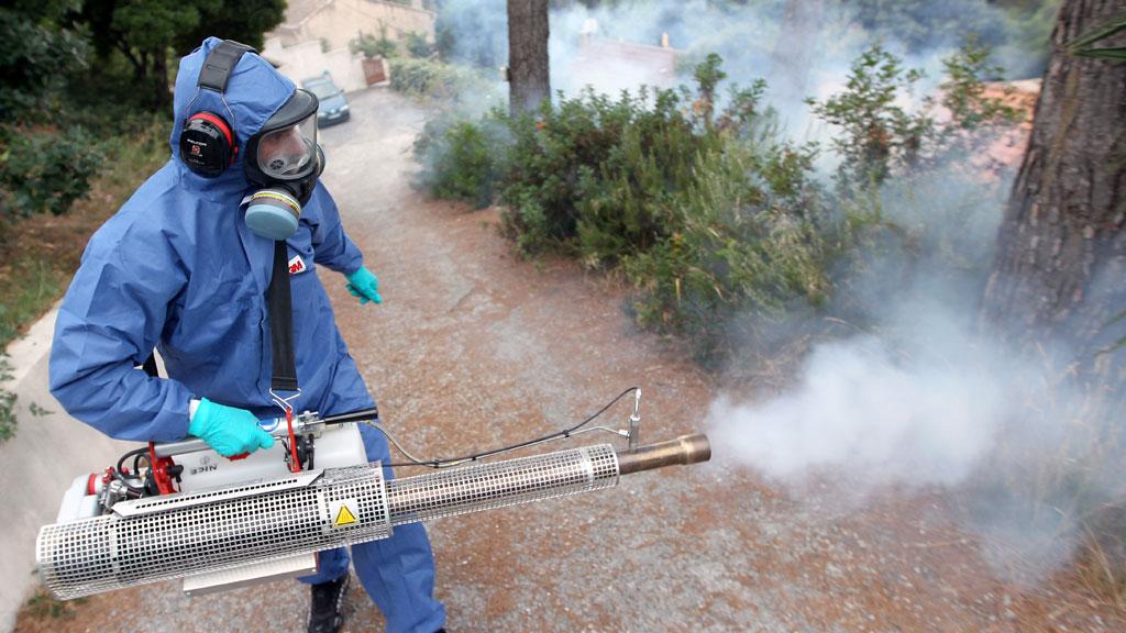 شركة رش مبيدات بالخبر